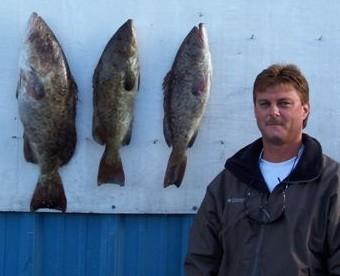 Nice grouper in Cedar Key