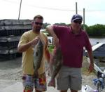 Two Nice Cedar Key Grouper