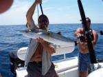 A King Fish To Make Life Fun