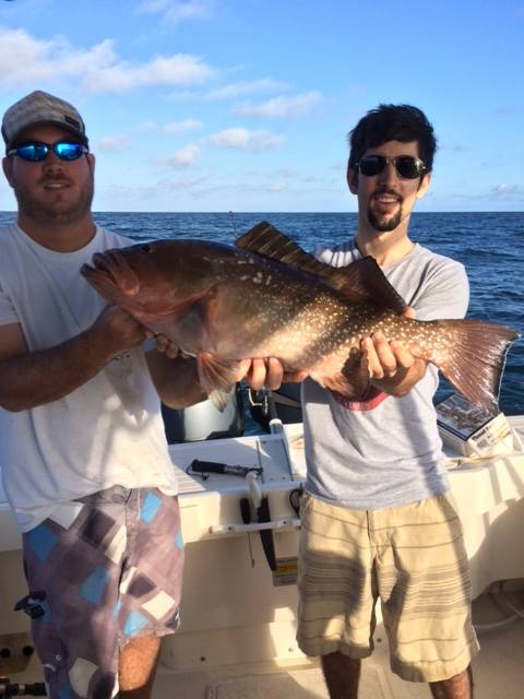 Nice Red Grouper released unharmed