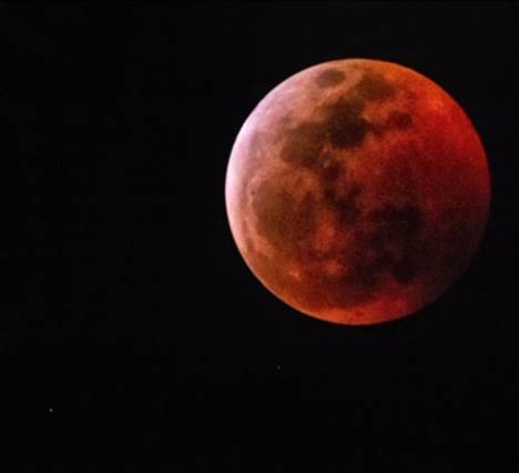 Blood wolf moon picture from Cedar Key Florida