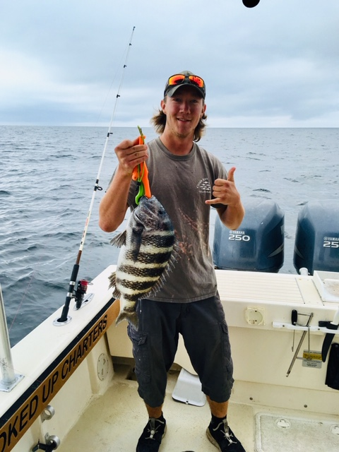 Kit with a huge Sheepshead, caught with Captain John