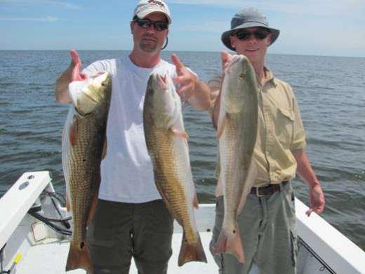 Three Keeper Steinhatchee Redfish