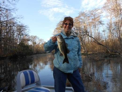 Early Morning Ocklawaha Largemouth Bass