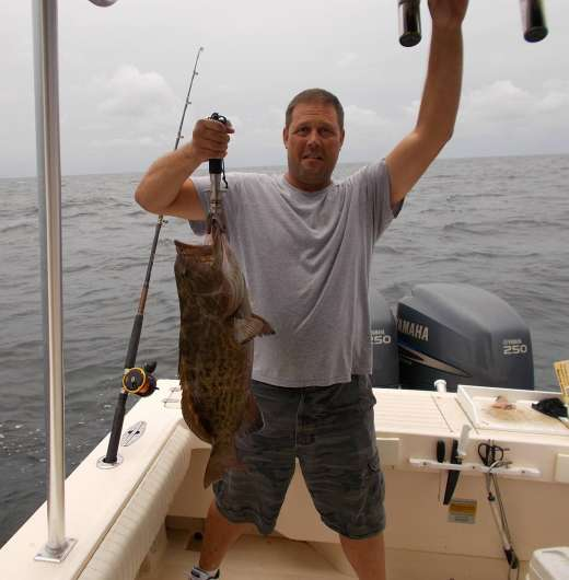 Ceder Key Gag Grouper Caught with Hookedup Charters