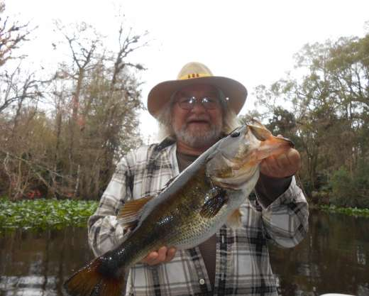 Look At That Big Mouth. Ocklawaha largemouth caught with Slick Charters
