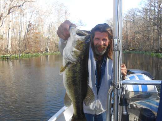 Ocklawaha Largemouth Caught With Slick Charters