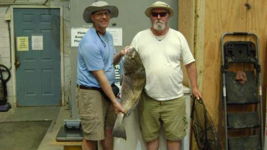 Bill with a nice drum caught using shrimp