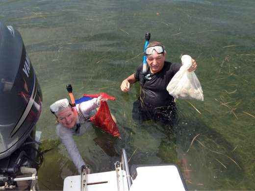 Homosassa, Florida where they have clear water and plenty of Scallops