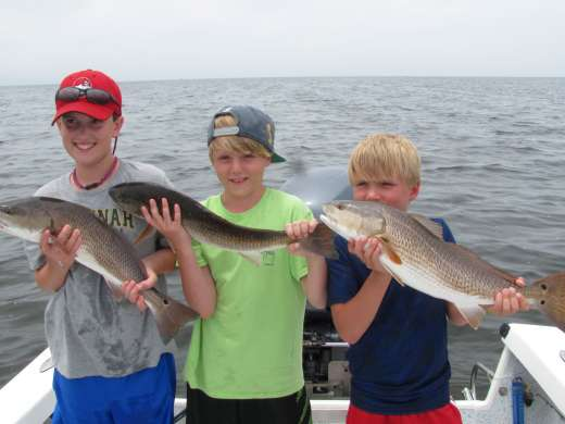 Steinhatchee fishing reports part 2 for Big bend fishing report