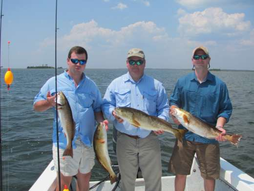 More Steinhatchee Redfish