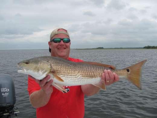Redfish Caught In Steinhatchee Florida