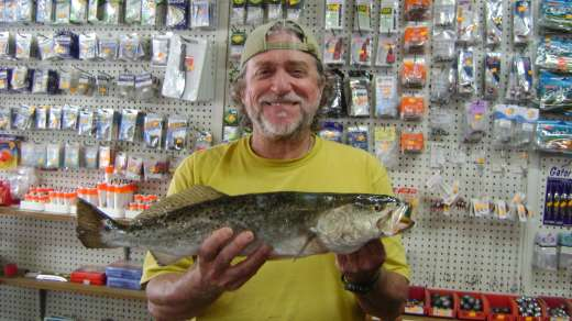 Mike Riley with Cedar Key Marina's November 2015 Winning Trout