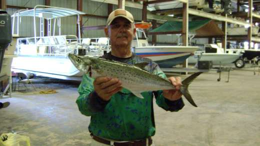 Bob w a huge Spanish Mackerel nice catch