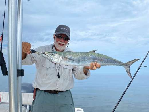 D says the Kingfish are back