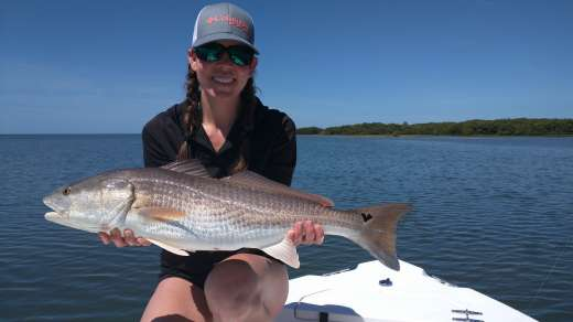The Lady's Redfish Has A Heart Shaped Spot