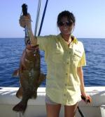 Nice Cedar Key Grouper