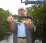 Another Ocklawaha Largemouth Bass