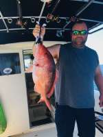 Social distancing and a big Snapper release