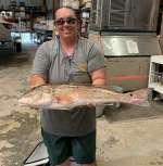 Ashley with a very nice 71/2 lb Cedar Key Redfish