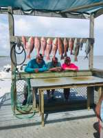 They slayed them, Red Snapper & Grouper