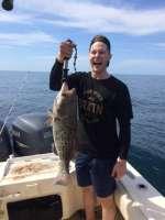 Gag grouper, released unharmed