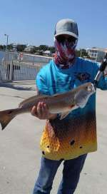 Rob Rickets w a nice red off the big dock