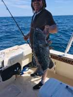 Roger helping check out the Gag Grouper population, looks good