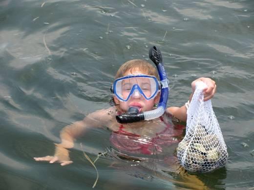 Florida saltwater fishing pictures steinhatchee for Steinhatchee fl fishing
