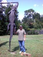 """A Gator """"Just A Little"""" Longer Than The Guy"""