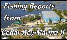 Cedar Key Marina