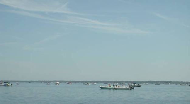 Big Bend Scalloping On The Fourth Of July Weekend