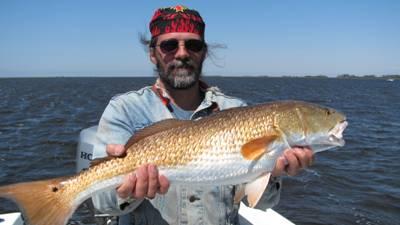 A steinhacthee redfish