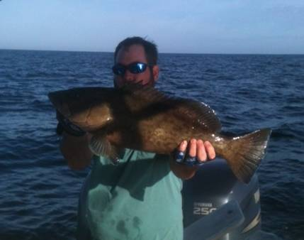 Nice Gag Grouper Caught With Hookedup Charters