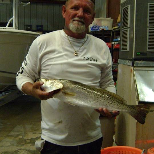 Tim With A Fine 4.5 lb Cedar Key Speckled Trout, Nice One!