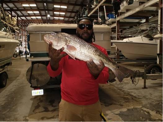 Now this is a fine Cedar Key Redfish